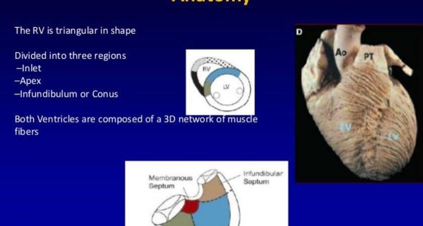 Acute Failure Physiology Management