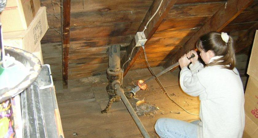 Attic Plumbing Old Vent Pipe Removal Our Victorian