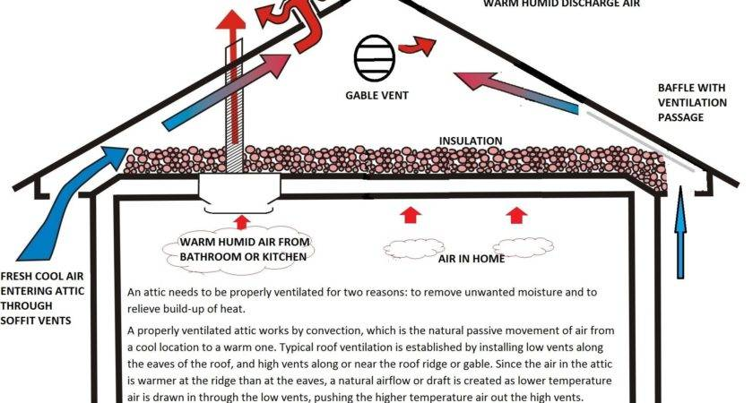 Attic Ventilation Options Google Search Roof Vent