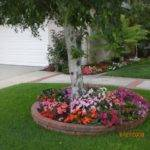 Backyard Landscaping Ideas Trees Izvipi