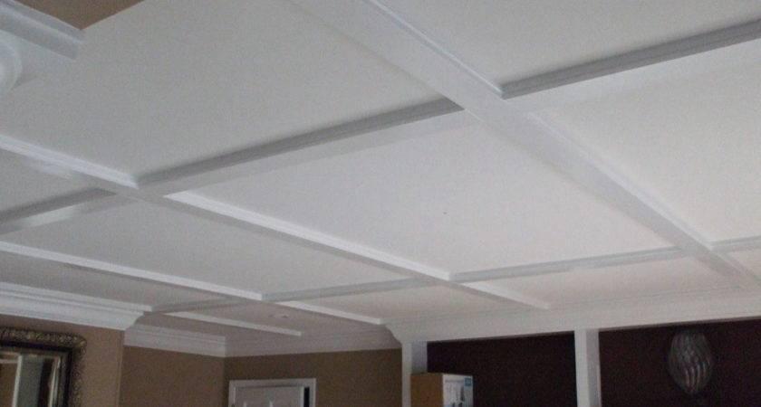 Basement Drop Ceiling Ideas Color