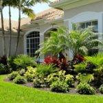 Best Front Yard Florida Pinterest