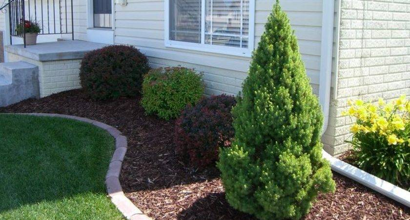 Best Garden Edging Ideas Pinterest