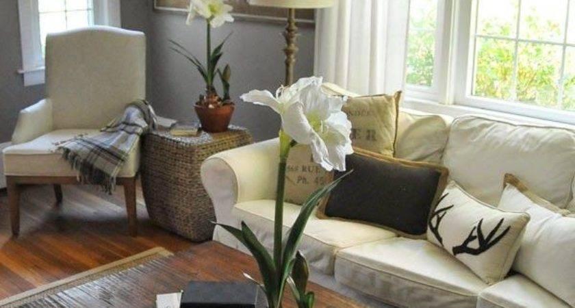 Best Gray Living Rooms Ideas Pinterest Grey Walls