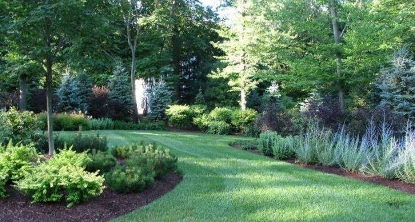 Best Privacy Fence Landscaping Pinterest