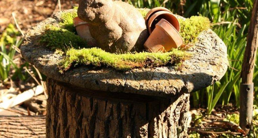Best Tree Stump Ideas Pinterest Fairies