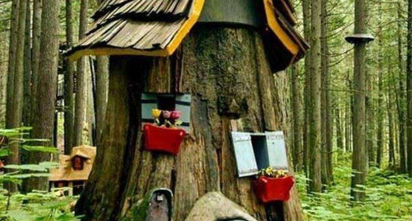 Best Tree Stumps Ideas Pinterest Gnome Stump