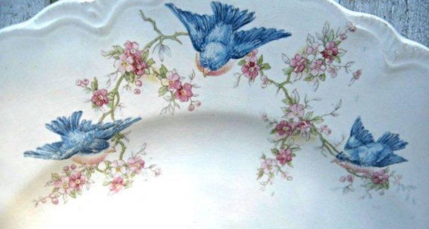 Best Vintage Plates Ideas Pinterest China