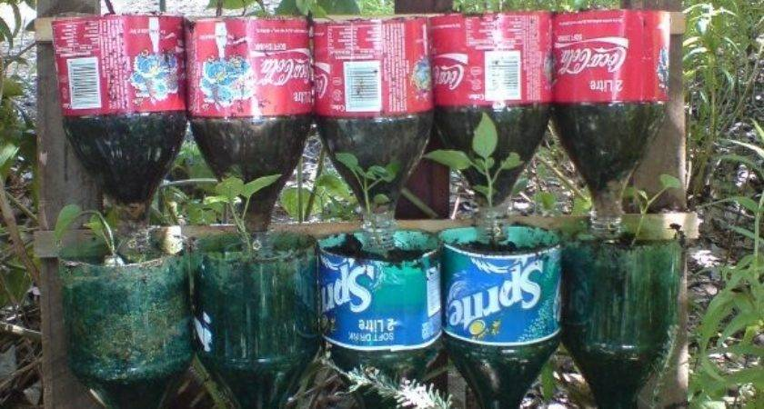 Bottle Herb Garden Recycling Project
