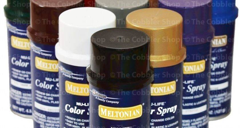 Brillo Color Spray Leather Vinyl Paint Dye All