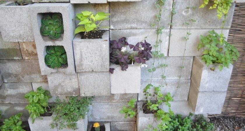 Budget Backyard Ways Cheap Concrete Cinder