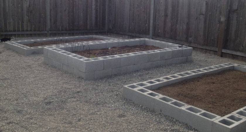 Build Cinder Block Raised Garden Bed Sunshine