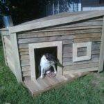 Build Dog House Out Pallet Pallets Designs