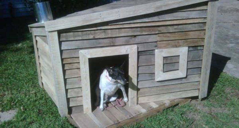 Build Dog House Out Pallet Pallets Designs