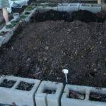 Build Raised Vegetable Garden