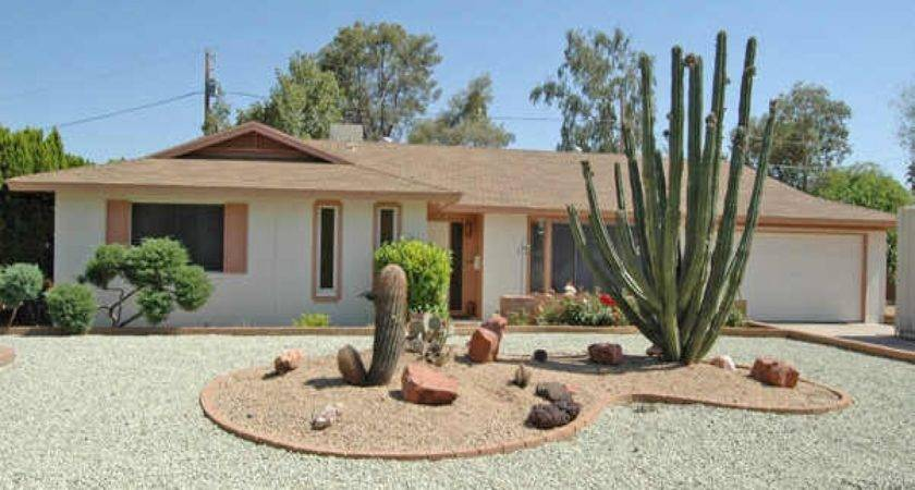 Cactus Landscaping Ideas Front Yard Flower