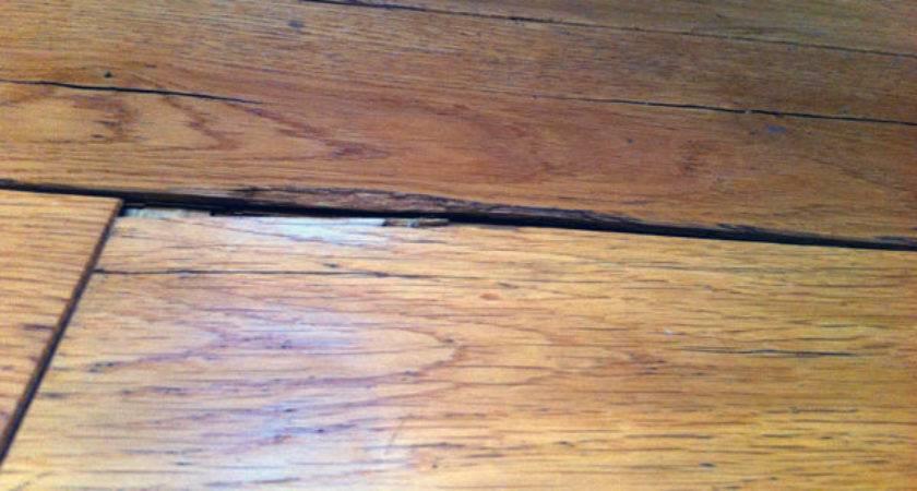 Can Steam Mop Hardwood Floor Wood Floo