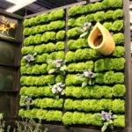 Cool Diy Green Living Wall Projects Your Home