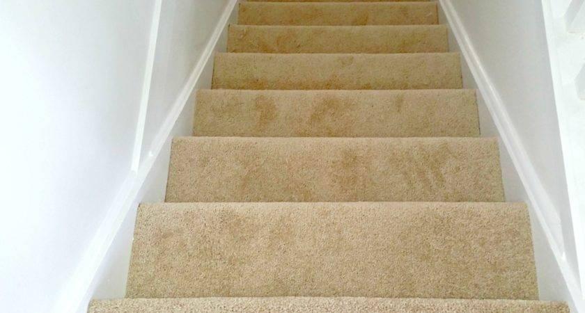 Cost Replacing Carpet Floor Matttroy
