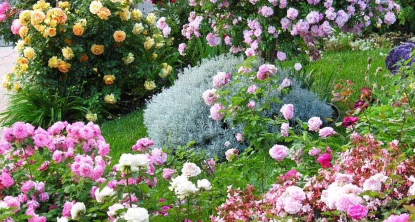 Cottage Gardens Love Landscaping Ideas Hardscape