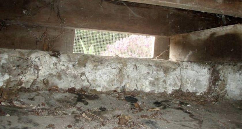 Crawl Space Repair Mount Pleasant Charleston