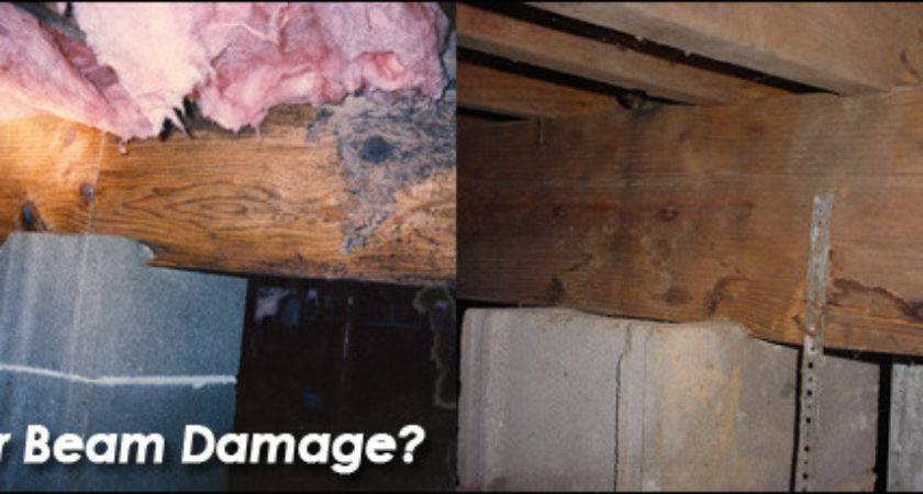 Crawlspace Beam Repair Replacement