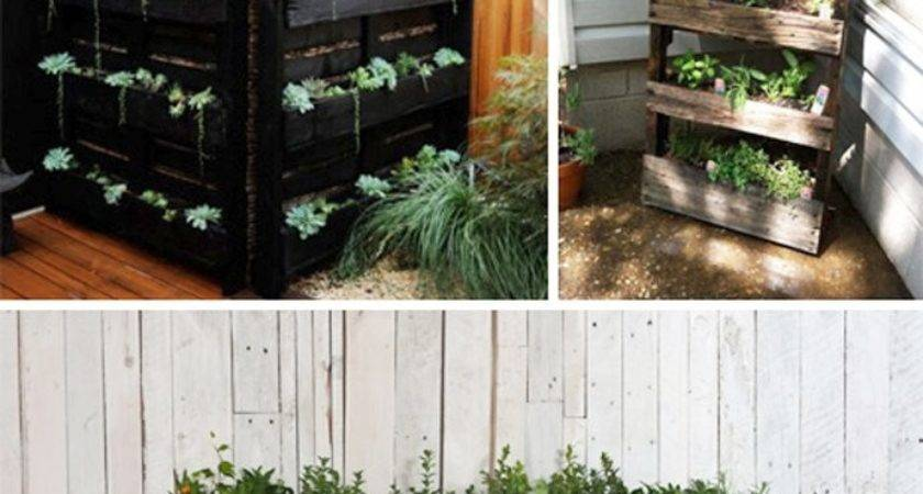 Creative Things Pallets Home Design