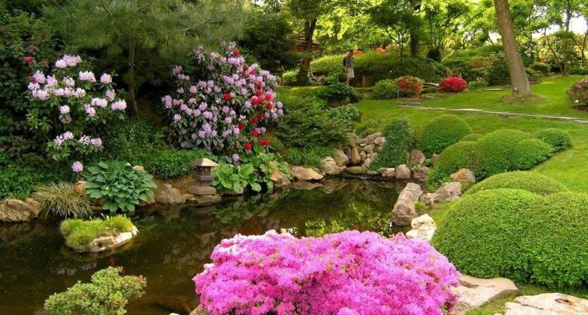 Cute Garden Ideas Your Homes Make Fresh Comfort