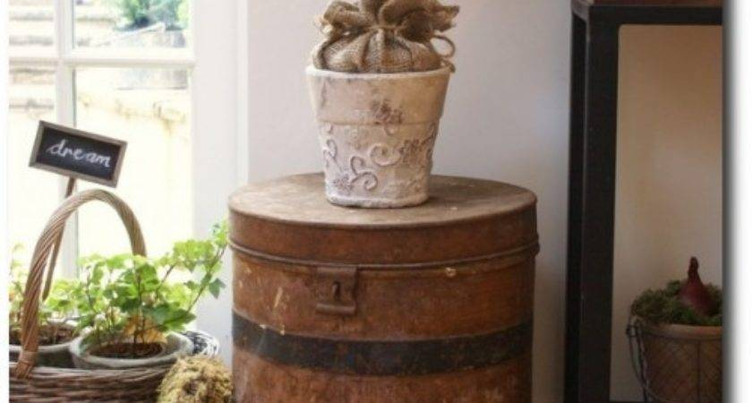 Decorate Potted Plants