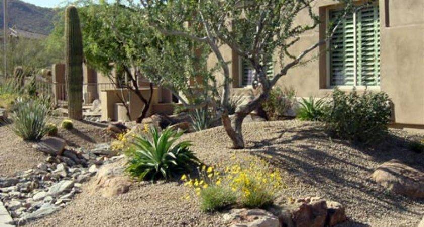 Desert Garden Design Landscape Ideas Outdoor
