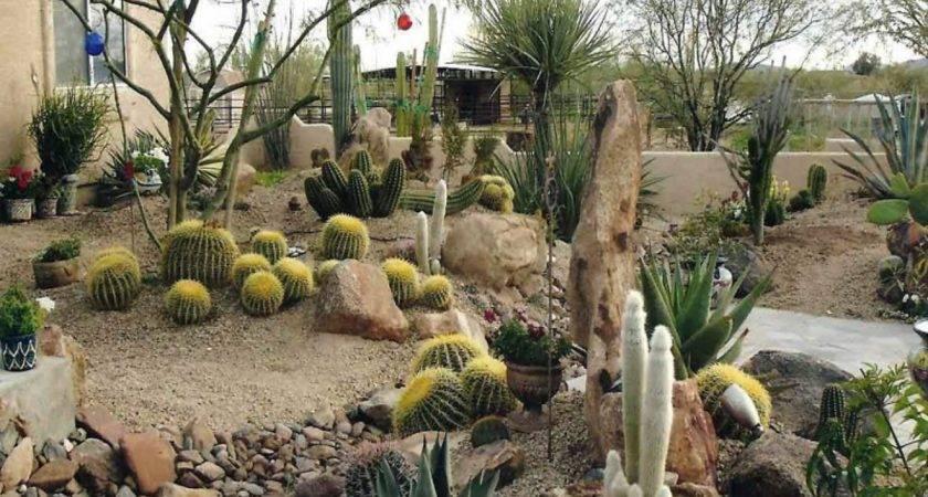Desert Gardens Landscaping Garden Design