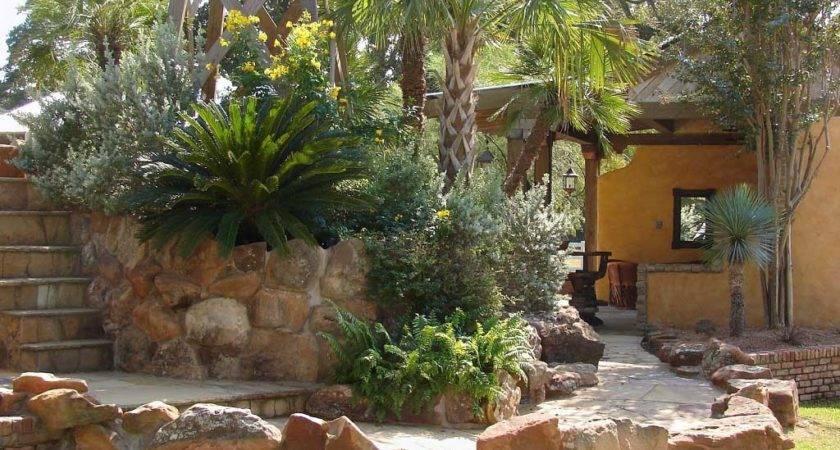 Desert Landscaping Ideas House Front Backyard