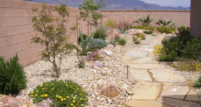 Desert Style Landscaping Ideas Picks