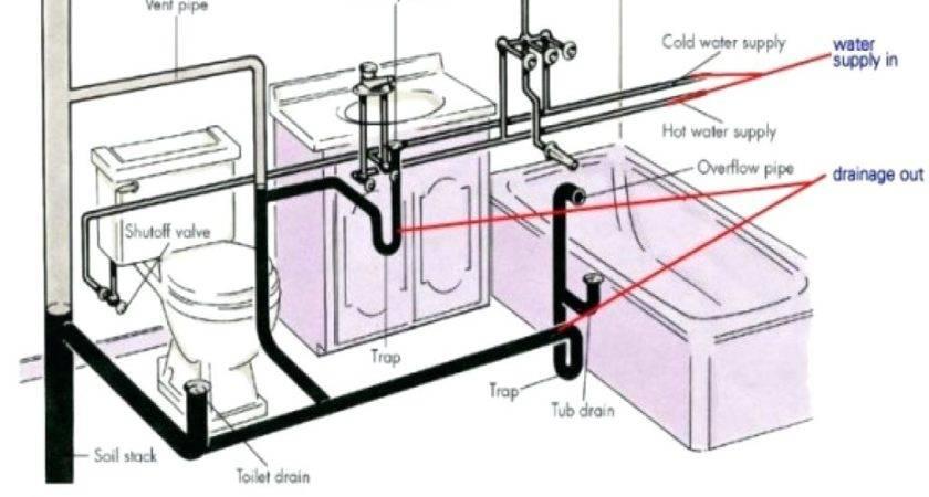 Diagram Shower Drain Trap Plumbing Sink