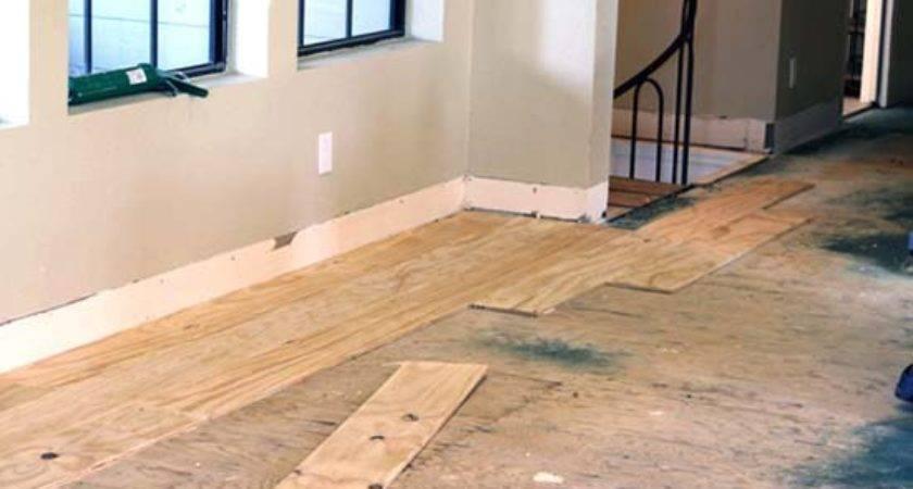 Diy Cheap Plywood Flooring Ideas Easy Steps