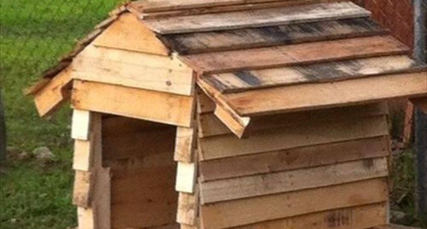 Diy Dog House Plans Made Pallets Designs