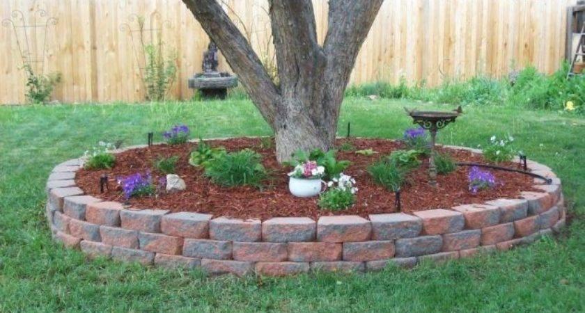 Diy Favorite Backyard Garden Ideas Summer