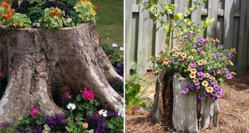 Diy Ideas Create Heavenly Backyard