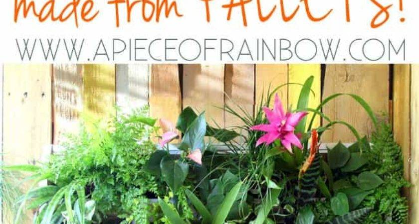 Diy Tropical Pallet Living Wall Piece Rainbow