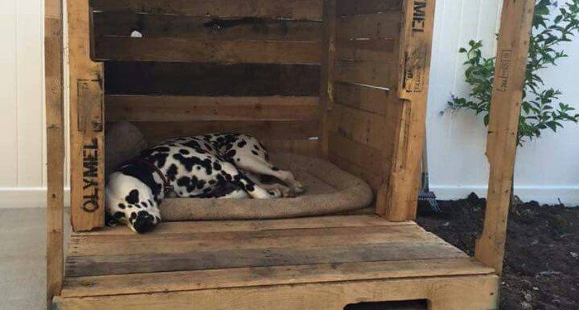 Dog House Out Pallets Beds Pinterest