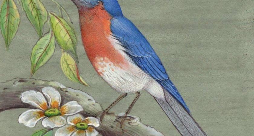 Eastern Bluebird Painting Handmade New York Missouri