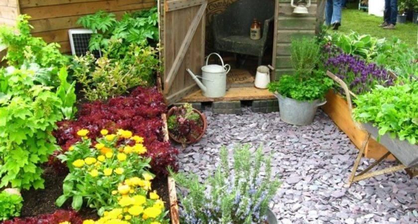 Ewa Garden Cute Vegetable Ideas