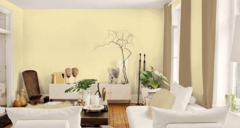 Fascinating Beautiful Wall Colors Living Room