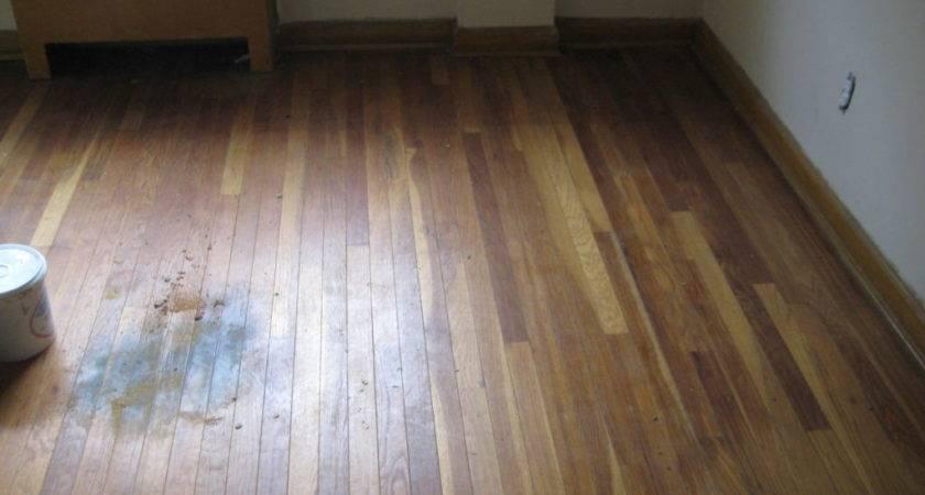 Fix Water Damaged Wood Floor Minimalist Nyc