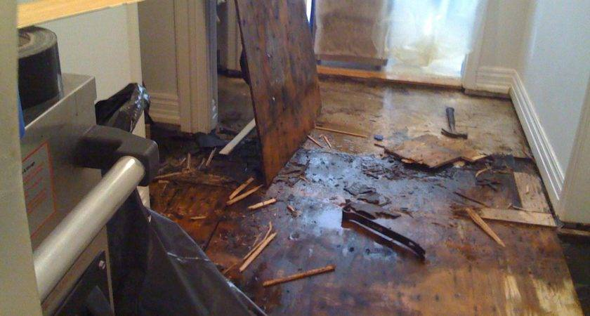 Floor Damage After Hurricane Flood Flooring Blog