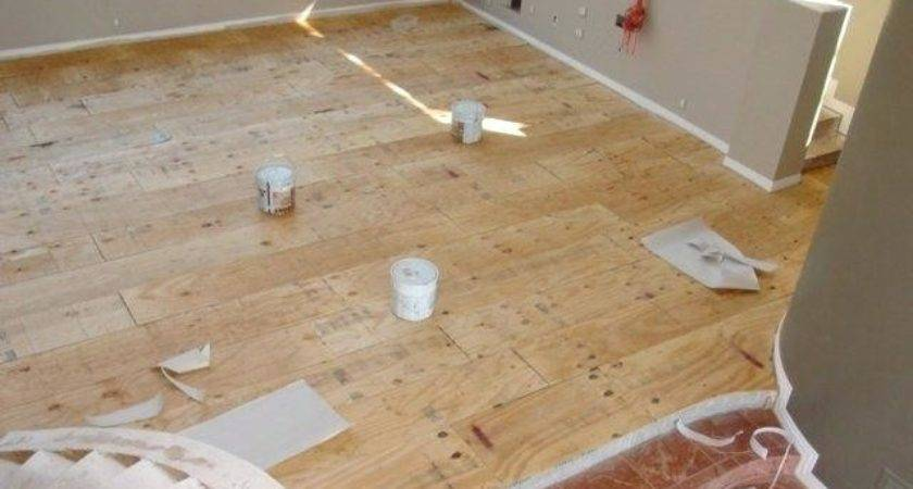 Floor Ply Flooring Concrete Wood Working Shed