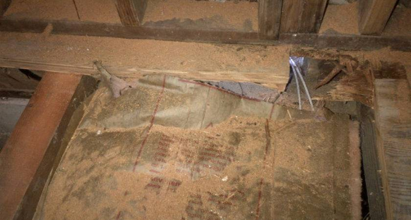 Flooring Normal Subfloor Extend Under Walls