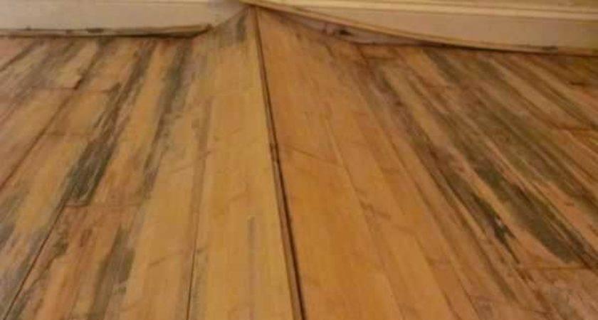Flooring Repair Shop Located Anaheim Serving All Orange