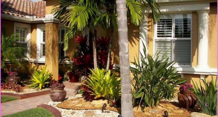 Florida Landscaping Ideas Front House Newest Home