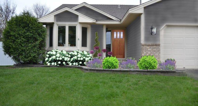 Florida Landscaping Ideas Garden Front House Innovative